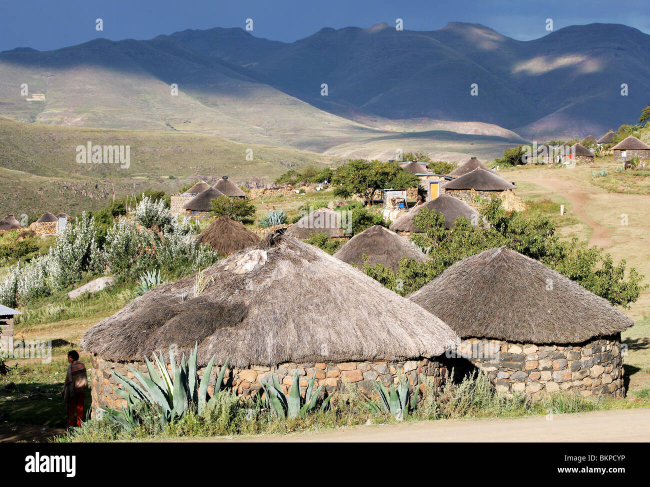 Traditional Basotho rondoval house made of stone with a thatch roof in Lesotho, Southern Africa - Stock Image