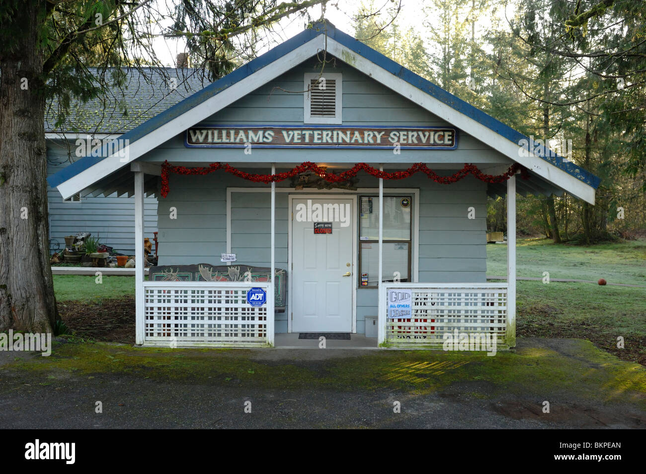 Veterinary Surgery in Maple Falls a small town in the Cascades on the Mount Baker Highway Whatcom County, Washington, - Stock Image