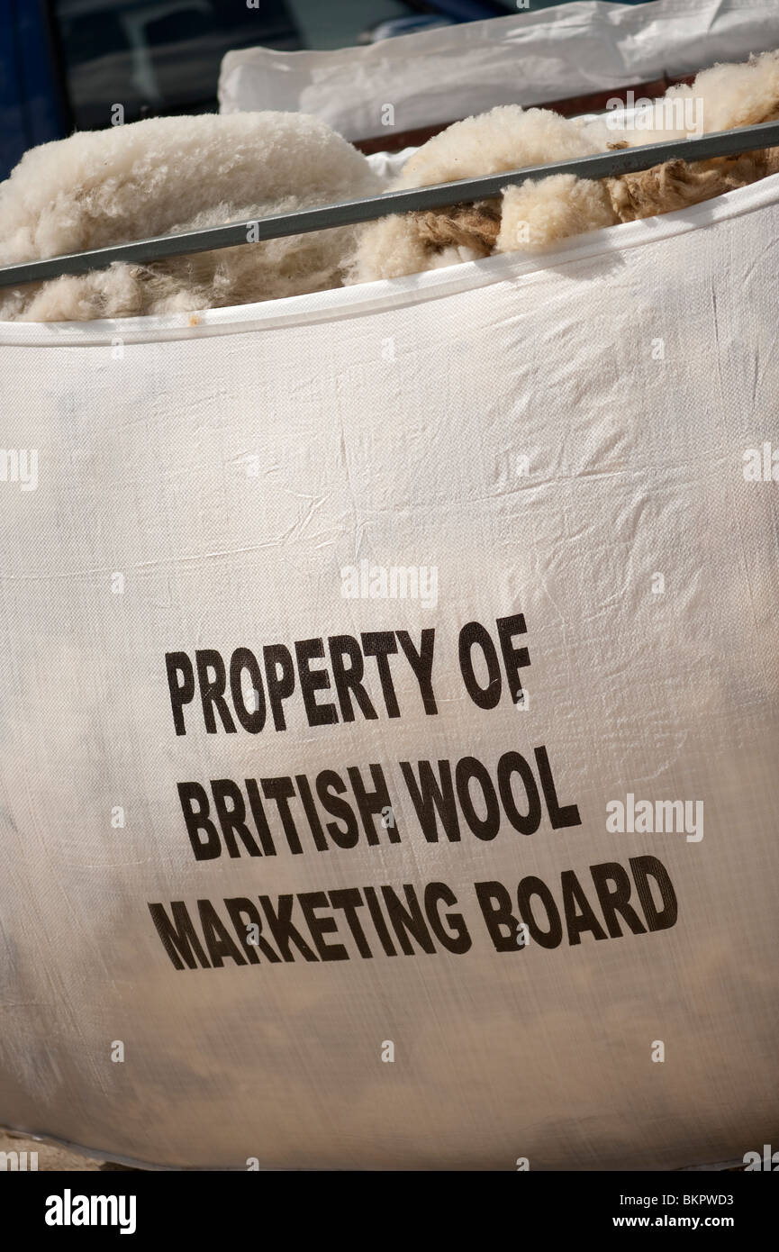 A large sack of wool fleeces property of the British Wool Marketing Board, UK - Stock Image