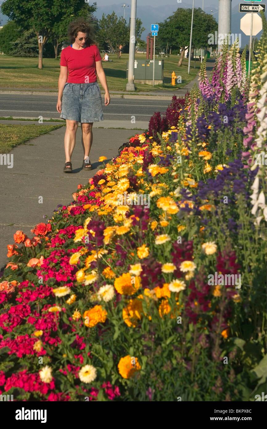 Woman Views Flowers Along Delaney Park Strip AK SC Summer Downtown ...