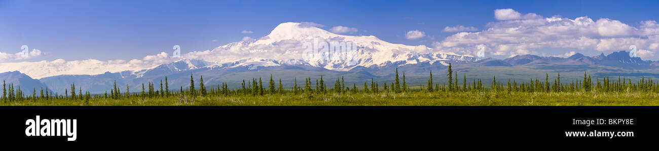 Panorama view of Mount Sanford and Mount Wrangell as seen from the Nabesna Road in Wrangell Saint Elias National - Stock Image