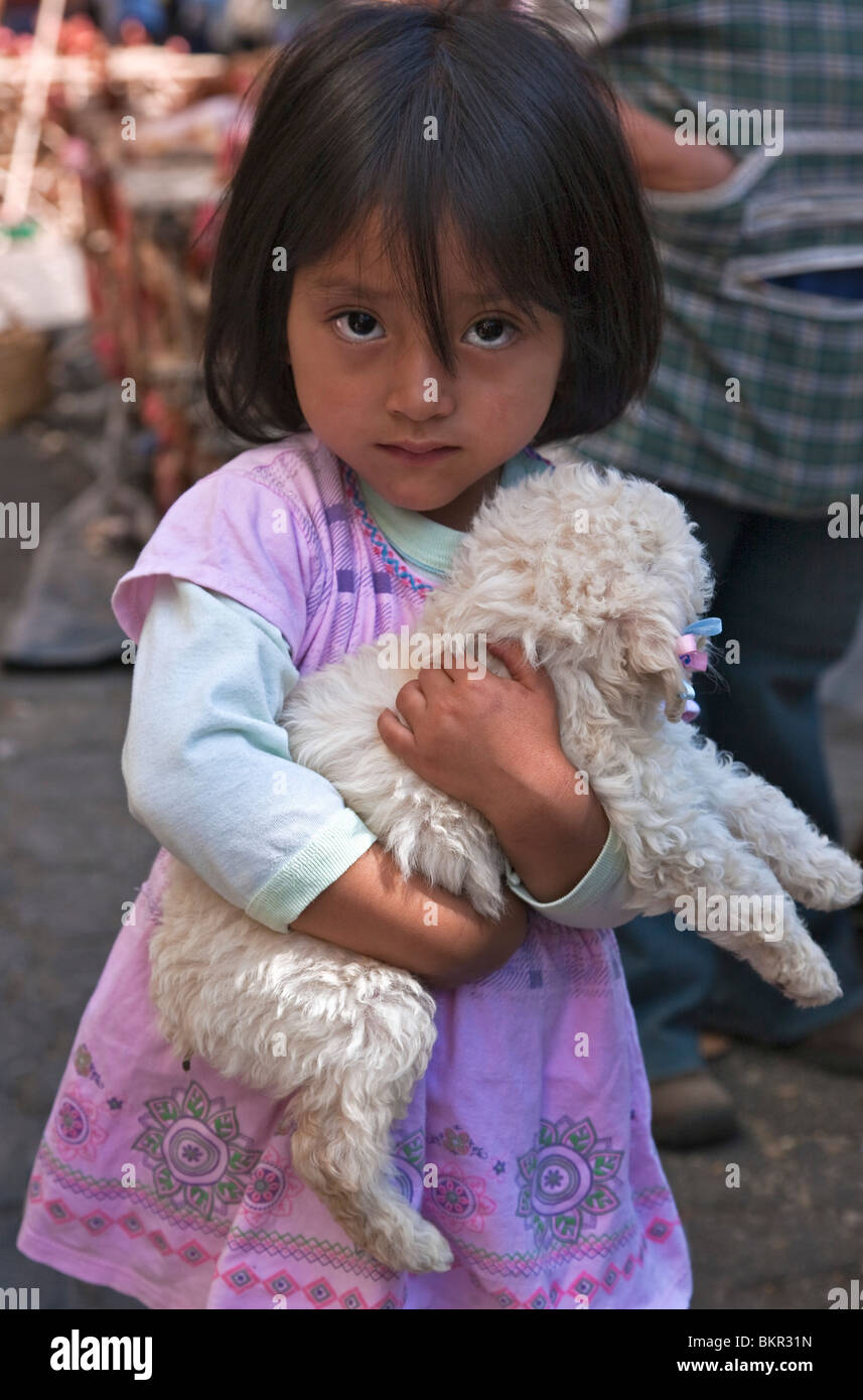 Ecuador, A young girl clutches the poodle puppy she has just bought at the weekly Sangolqui market. - Stock Image