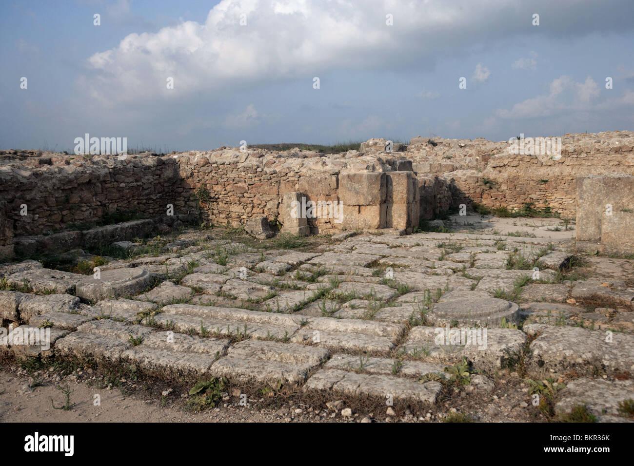 7th millennium BC