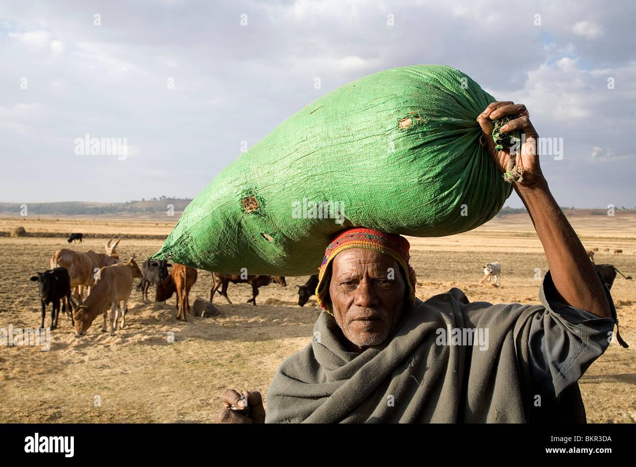Ethiopia, Debre Markos. An old man with a sack of grain outside Debre Markos. - Stock Image