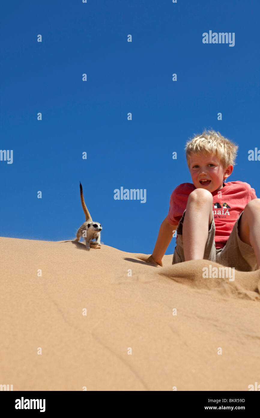 Namibia, Skeleton Coast, Namib Desert. A boy revels in the close proximity of a curoius meerkat on  coastal sand - Stock Image