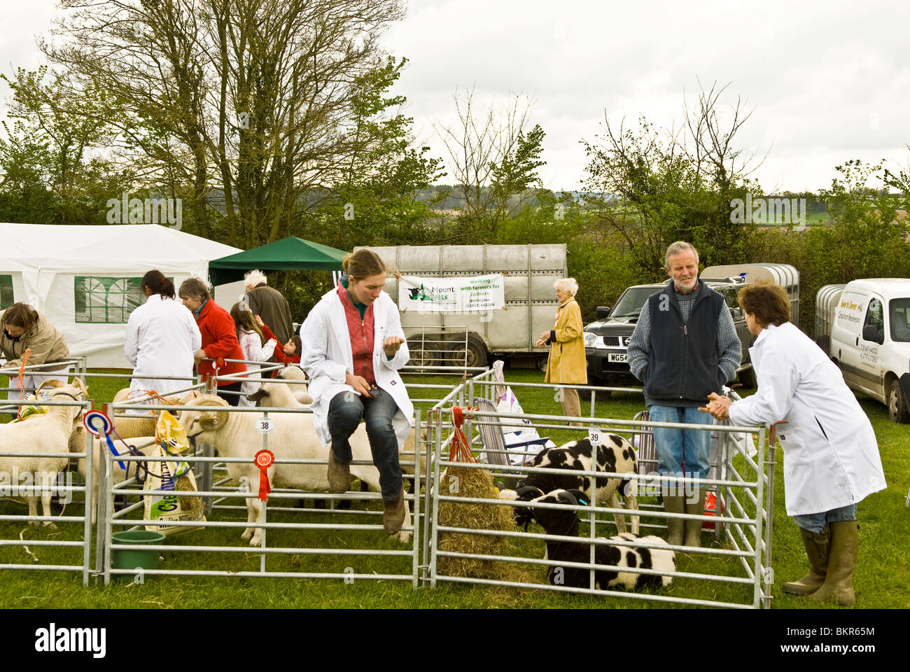 country county show with farmers standing and sitting round live stock pens Devon England UK 2010 - Stock Image