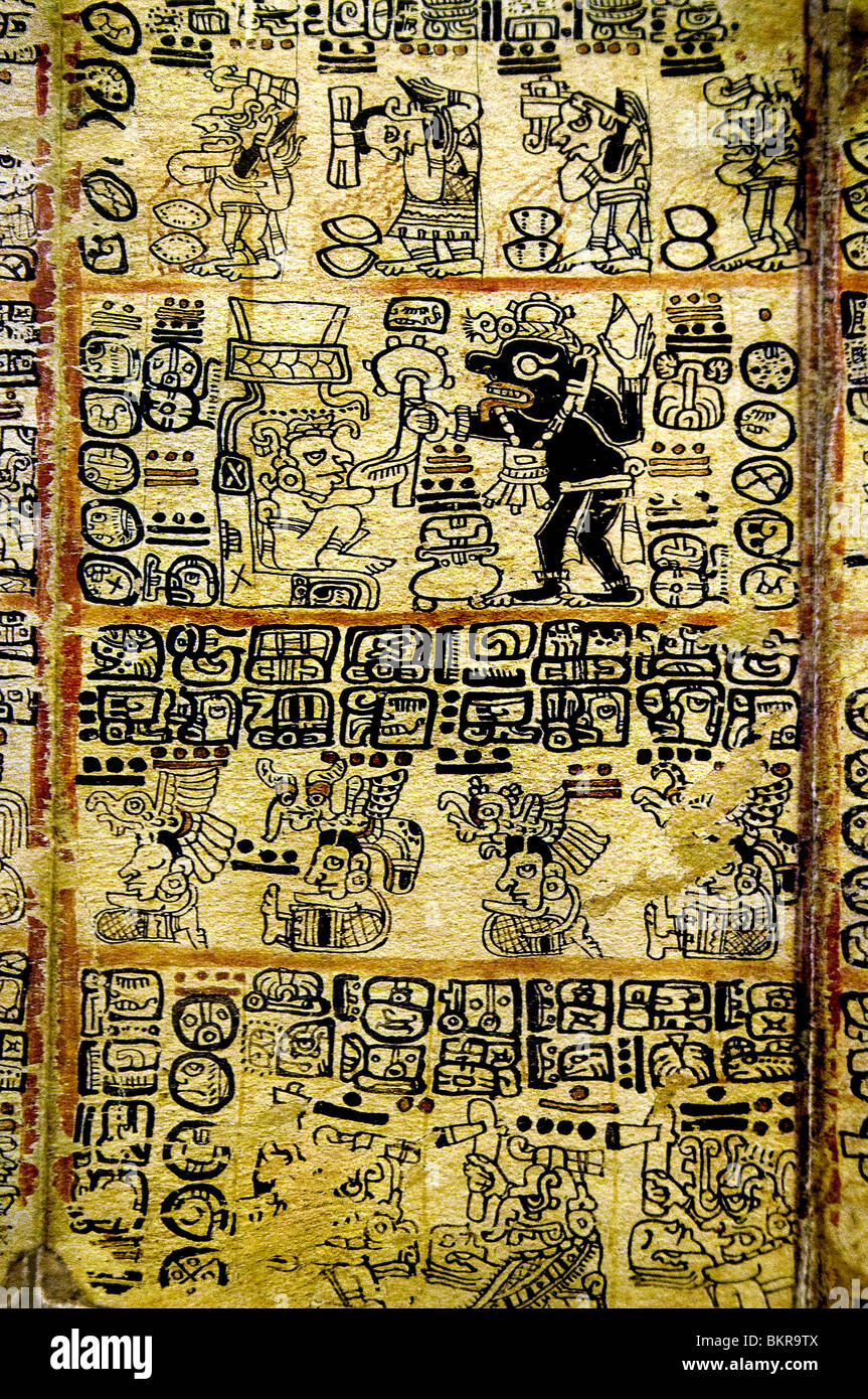 Codex Tro Cortesianus Maya codices pre Columbian Maya civilization written in Maya hieroglyphic 1250 1500 AD - Stock Image