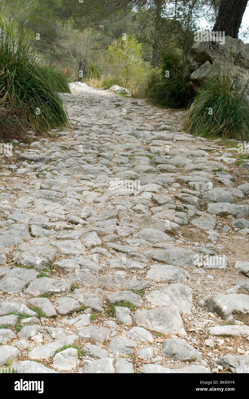 A part of the medieval pilgrimage route to the Lluc monastery (Majorca - Spain). Partie du chemin de pèlerinage - Stock Image