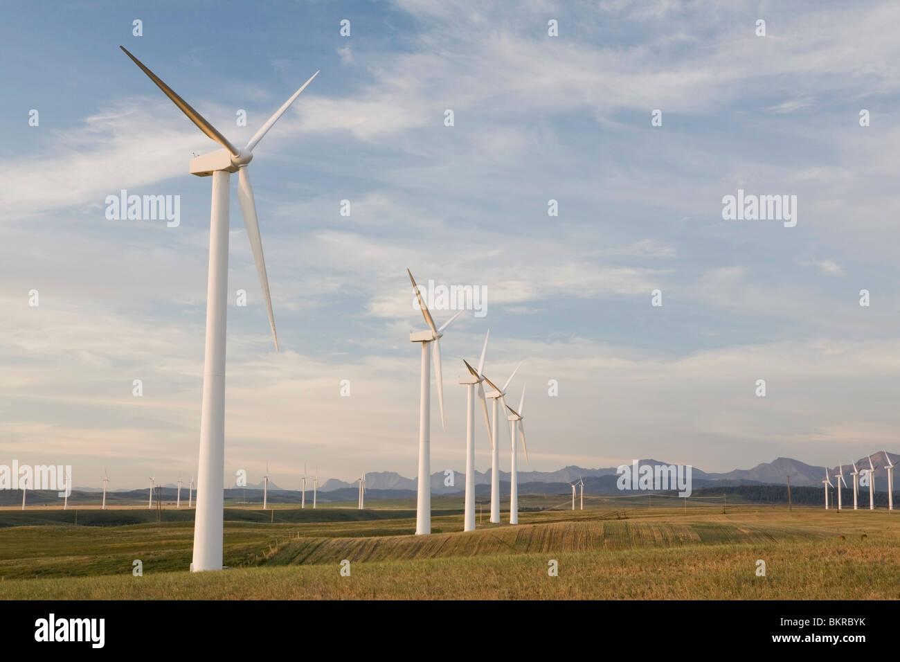Pincher Creek, Alberta, Canada; Wind Turbine Farm - Stock Image
