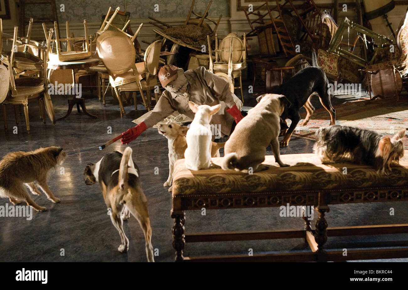 HOTEL FOR DOGS (2009) THOR FREUDENTHAL (DIR) 005 - Stock Image