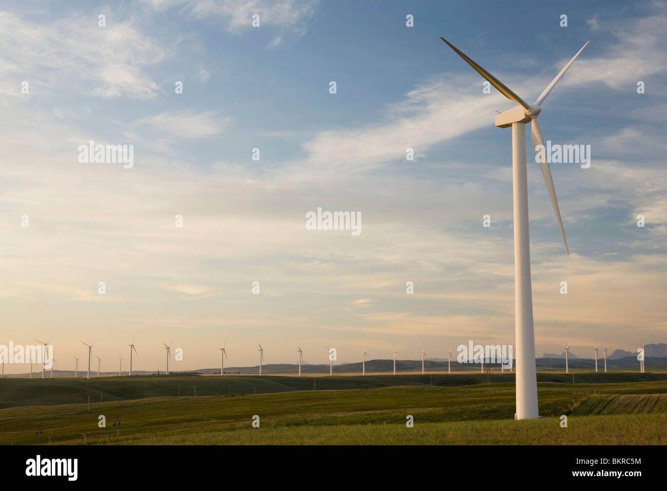 Pincher Creek, Alberta, Canada; Wind Mill Farm - Stock Image