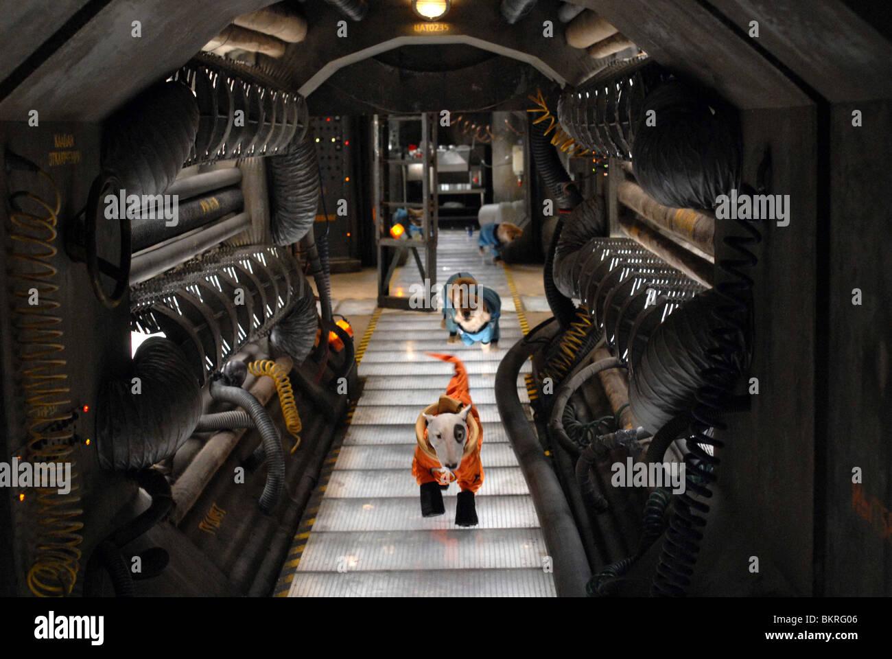 SPACE BUDDIES (2009) ROBERT VINCE (DIR) 002 - Stock Image