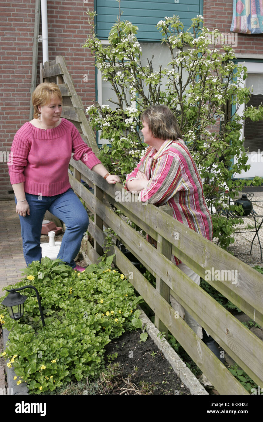 Good neighbours talking over fence in back garden. Female neighbors chatting friendly, nice word, nod and back garden - Stock Image