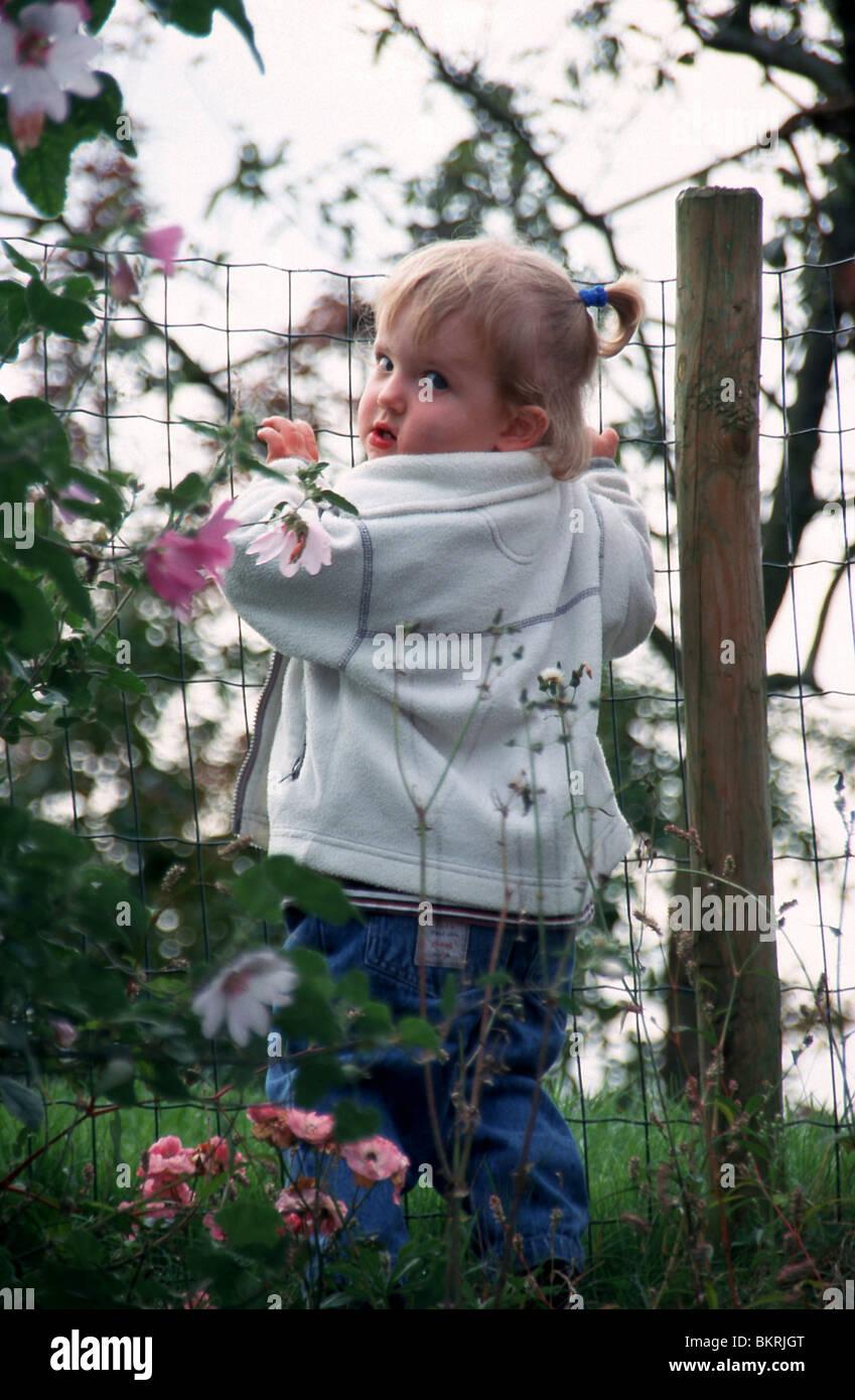 Little Girl Climbing Over Fence High Resolution Stock ...