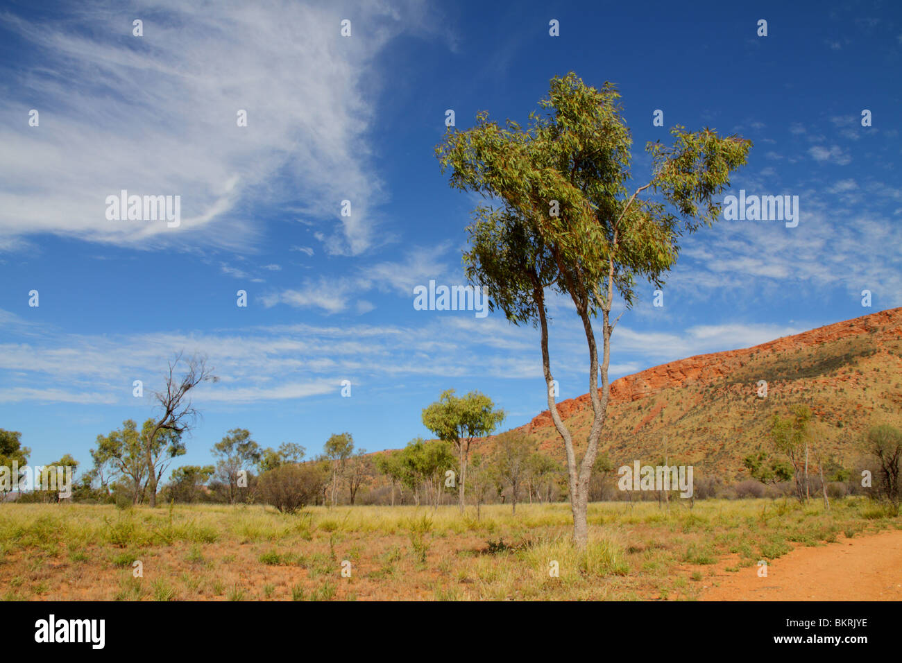Blue skies over the West MacDonnell range near Alice Springs, Alice Springs - Stock Image
