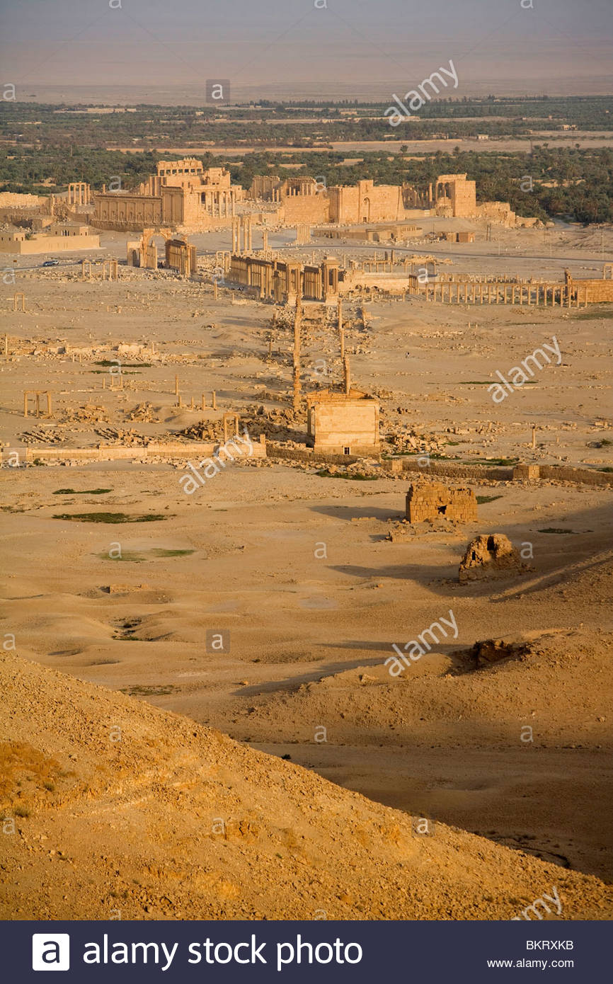 archaeological site of Palmyra,Syria,Middle East,Asia - Stock Image