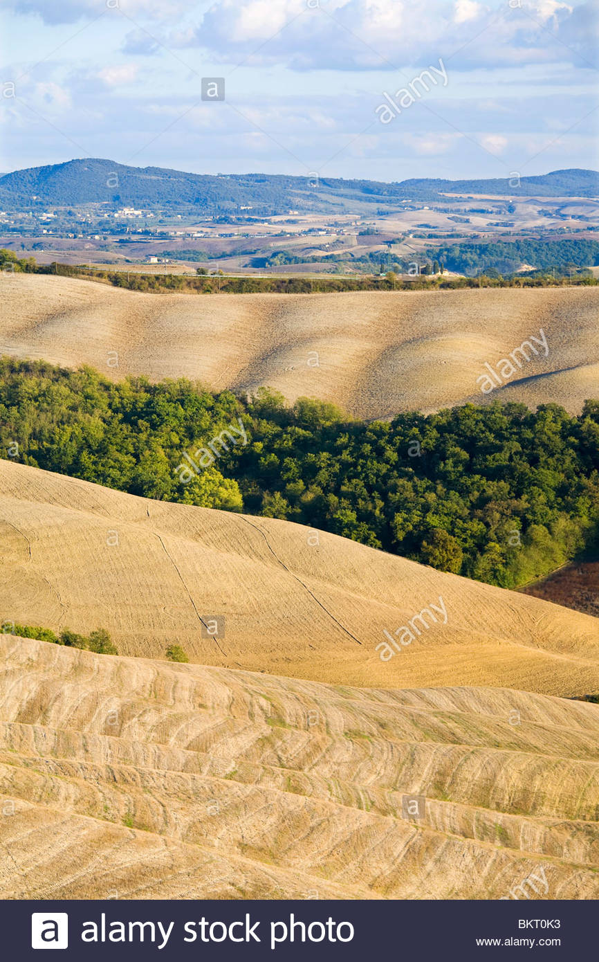 crete senesi,tuscany,italy Stock Photo