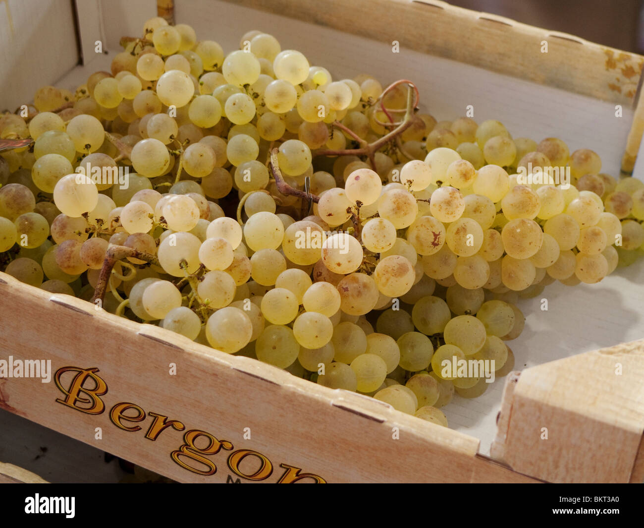 White grapes in wood box for sale. - Stock Image
