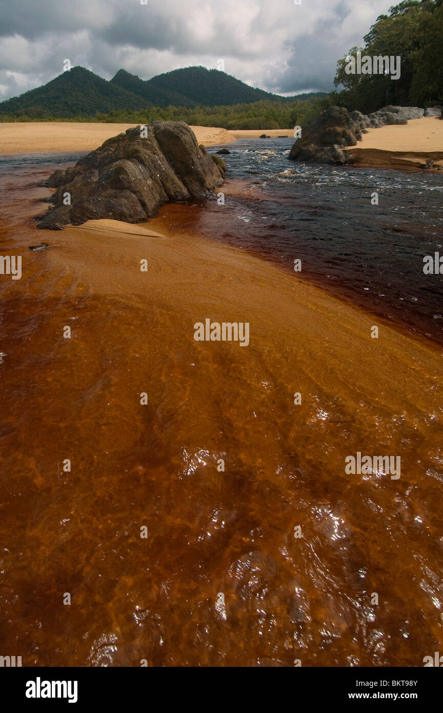 Darkly tannin-stained river running over the sands of Bramston Beach, north Queensland, Australia - Stock Image