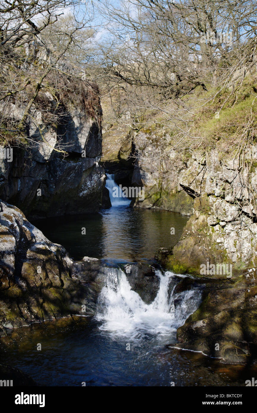 The 'Rival Falls', Yorkshire Dales, England, UK. - Stock Image