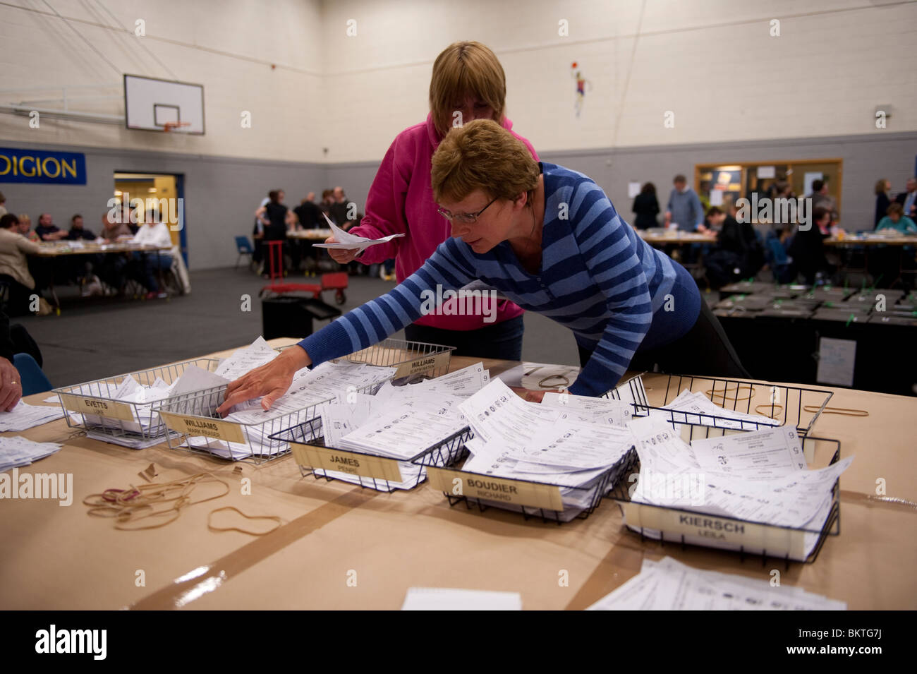 Counting the votes cast in the Ceredigion constituency at the General Election, May 6 2010 - Stock Image