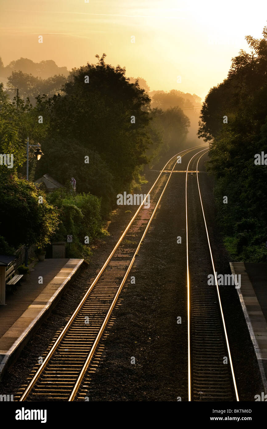 Railway tracks shining in the early dawn light at Avoncliff station - Stock Image