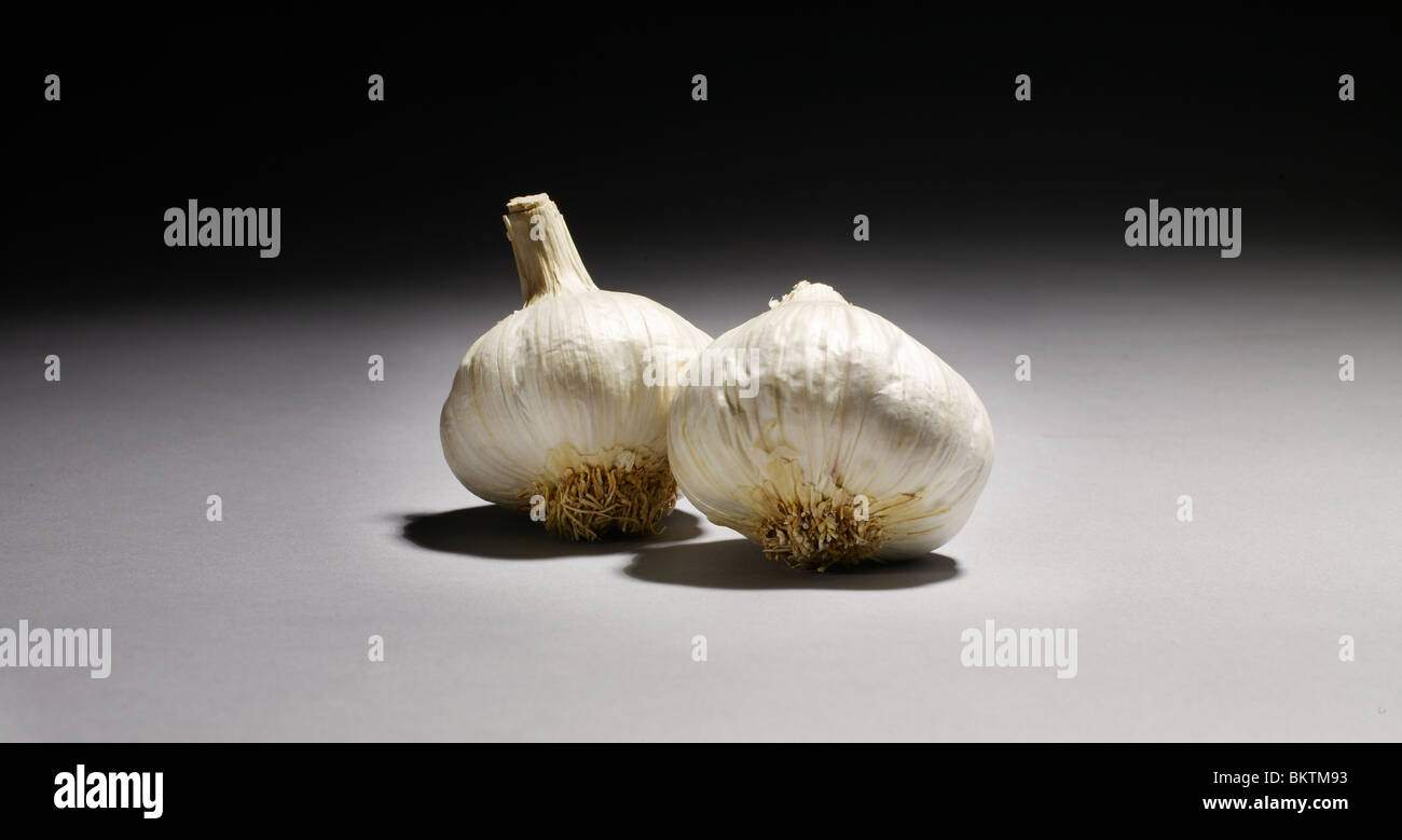 garlic - Stock Image