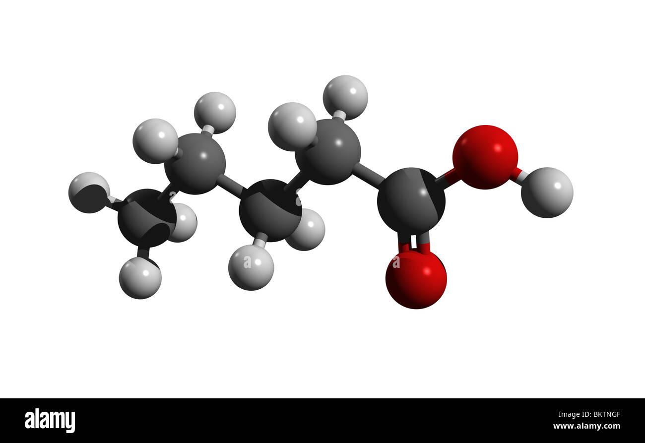 Valeric acid, pentanoic acid (colorcode: black=carbon, white=hydrogen, red=oxygen) Stock Photo