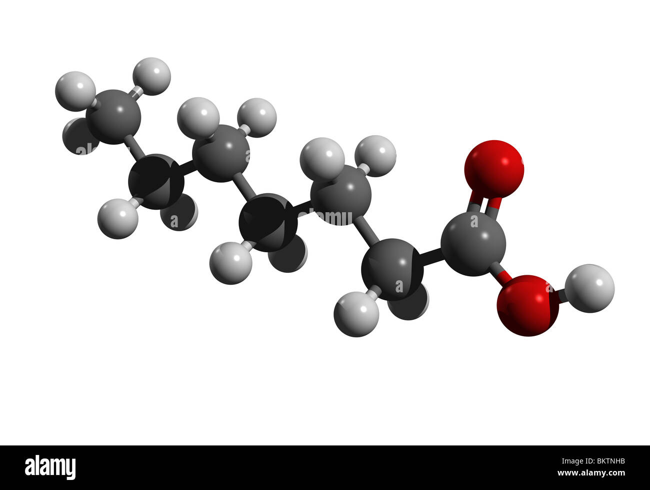 Heptanoic acid (colorcode: black=carbon, white=hydrogen, red=oxygen) Stock Photo