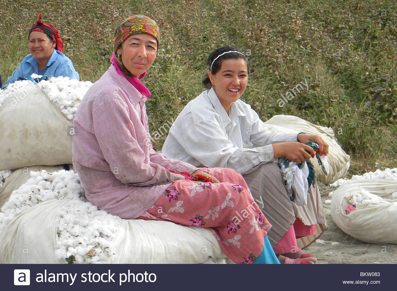 Cotton workers,Uzbekistan Stock Photo