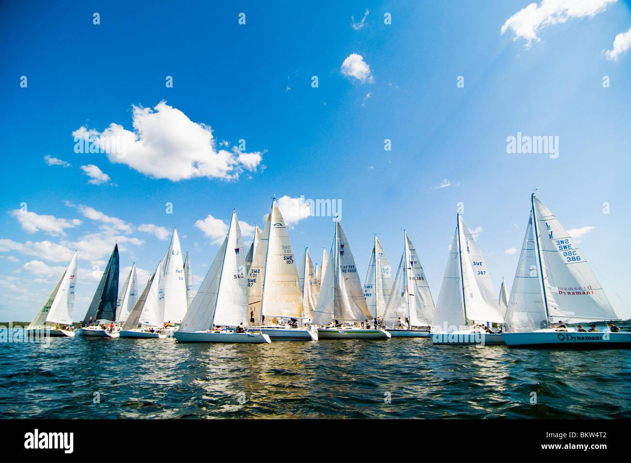 Several sailboats - Stock Image