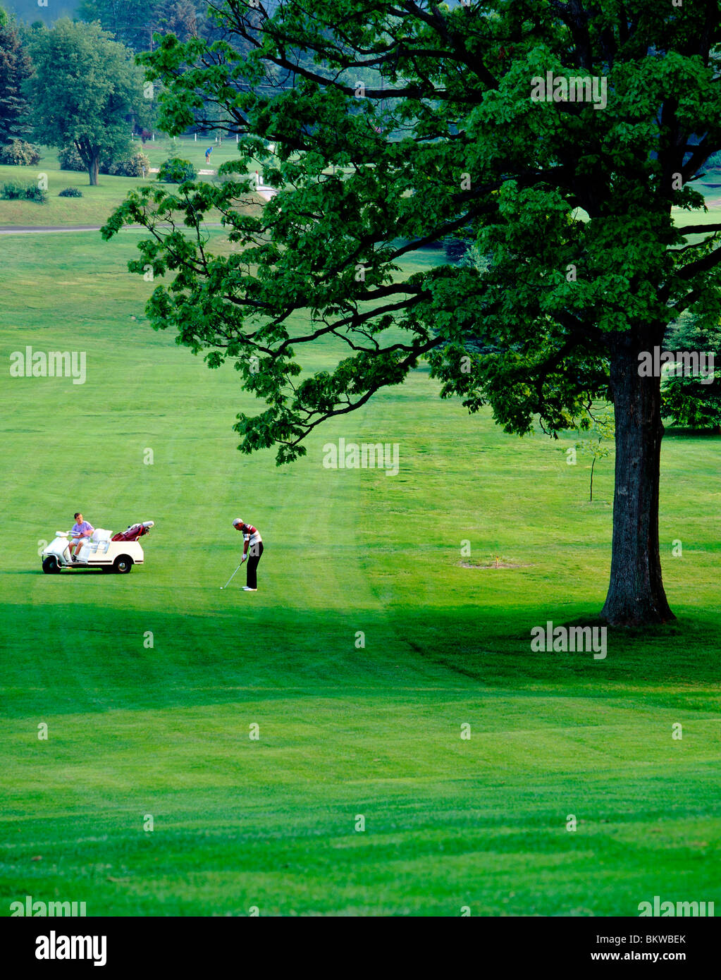 Lone golfer on the fairway, Foxburg Golf Club, oldest continuously run course in the USA (1887), Clarion County - Stock Image
