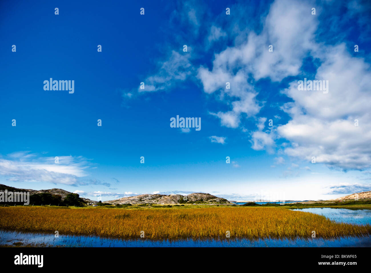 View over landscape - Stock Image
