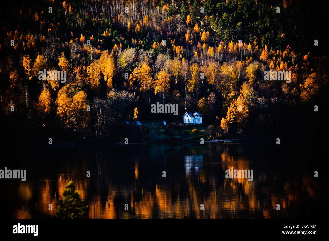 Remote house in the forest by lake - Stock Image