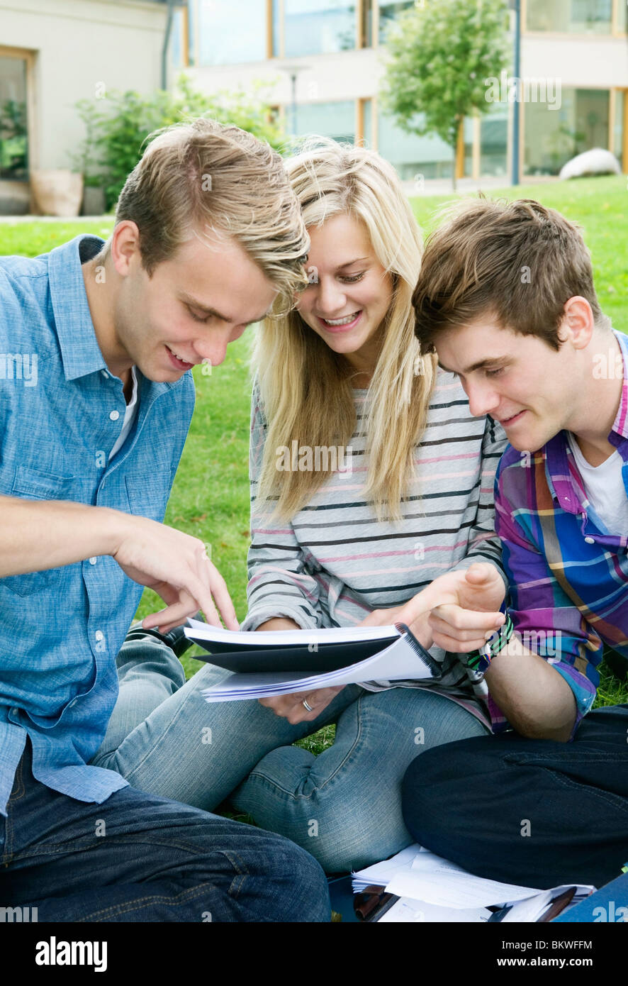 Three concentrated students - Stock Image