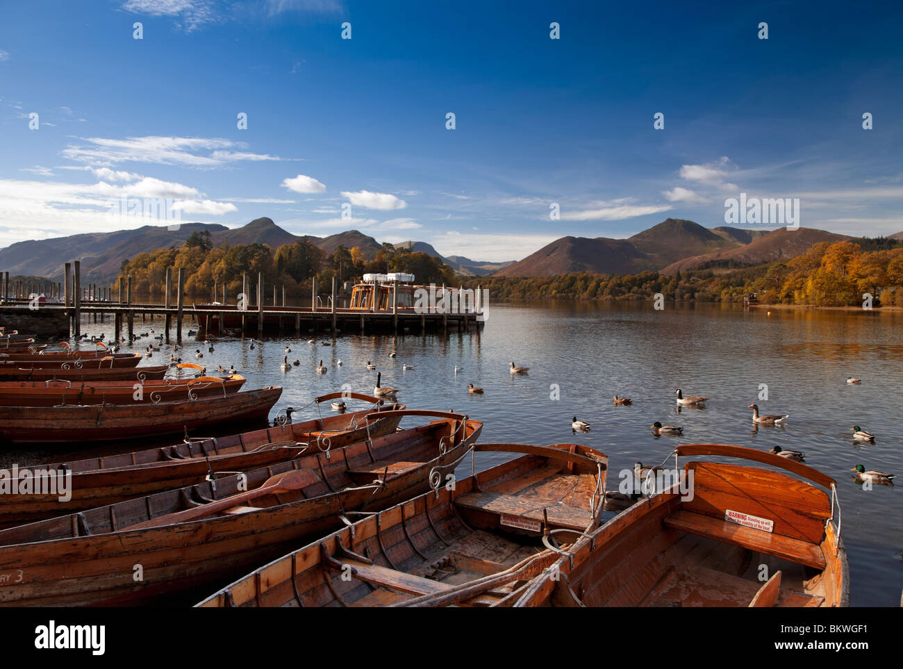 Derwentwater towards Catbells and Causey Pike in autumn, Cumbria, England - Stock Image