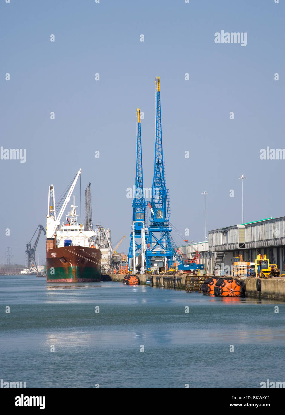 port of southampton Hampshire, ship waiting to be loaded - Stock Image