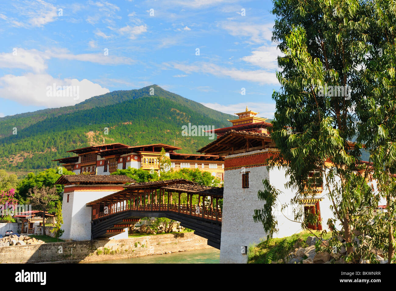 Bridge towards Punakha Dzong - Stock Image