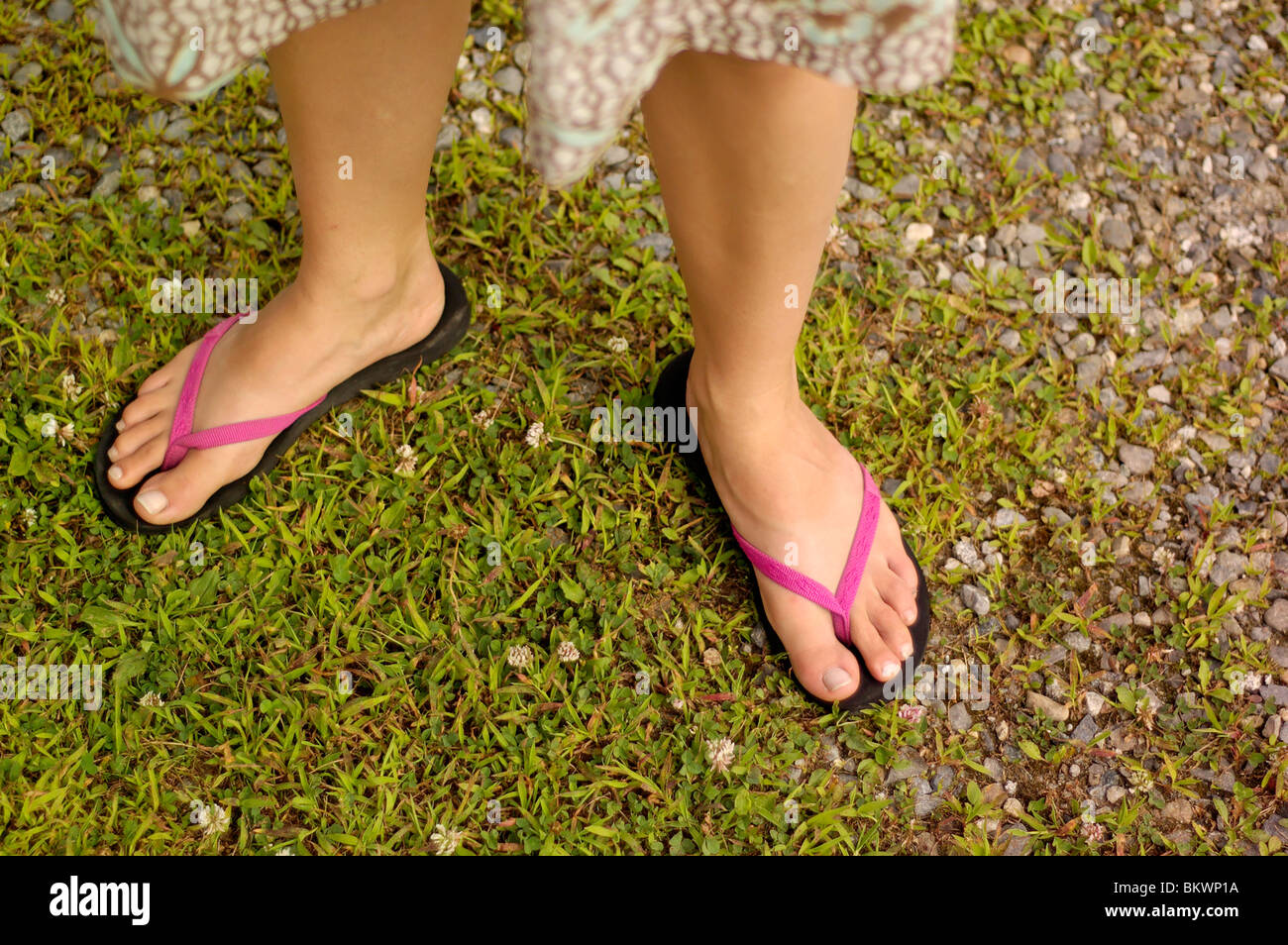 2a752c942f9b1 Stock photograph of a woman s feet wearing beach sandals. - Stock Image