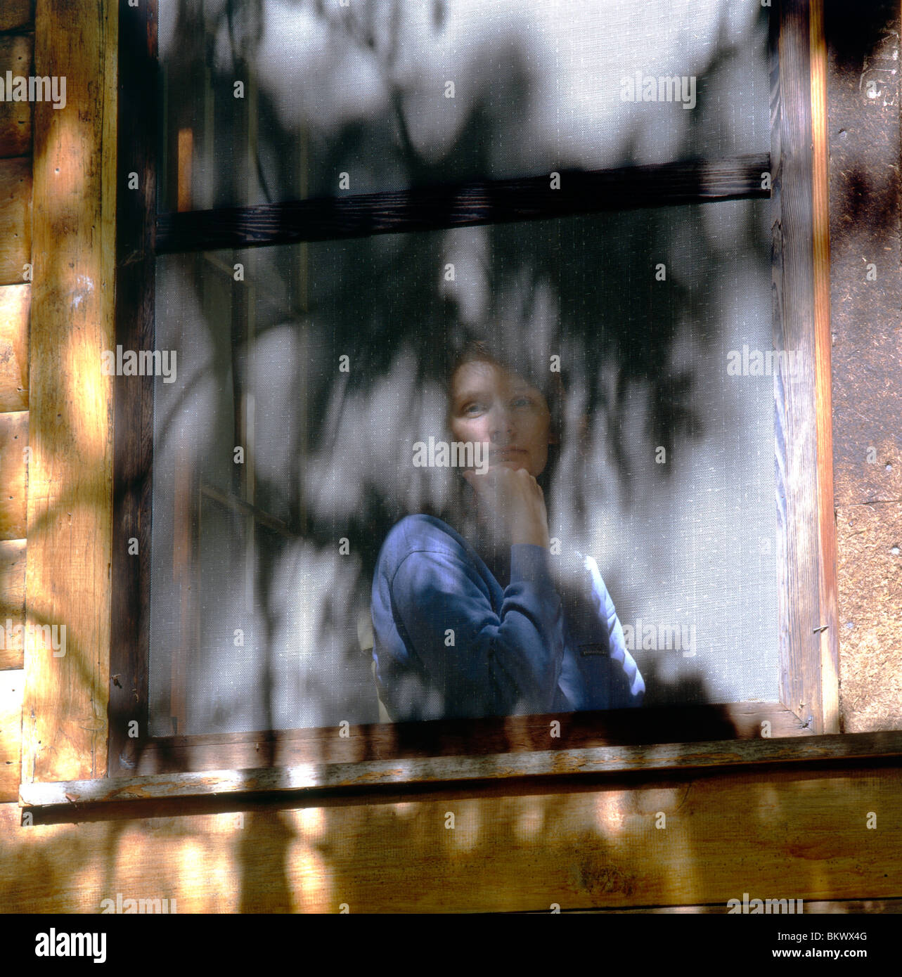 Sun dappled portrait of young woman viewed through screened window of a log cabin in the Adirondack Park, upstate - Stock Image