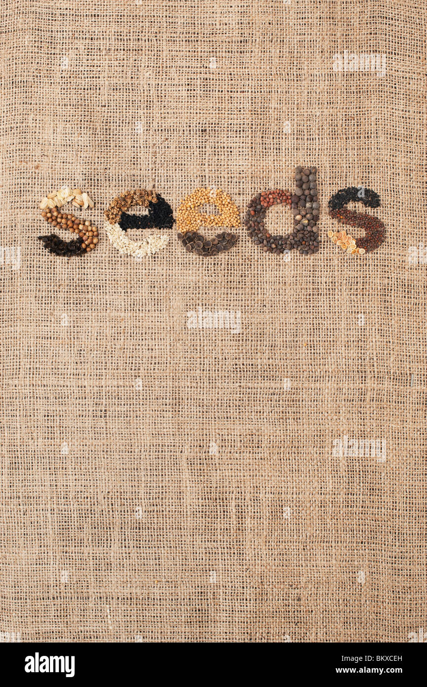The word 'seeds' spelt out with vegetable and flower seeds on hessian - Stock Image