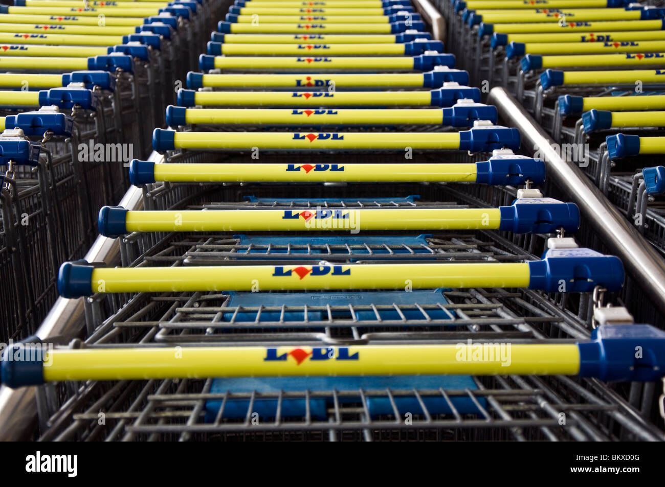 Shopping trolleys at LIDL's supermarket - Stock Image