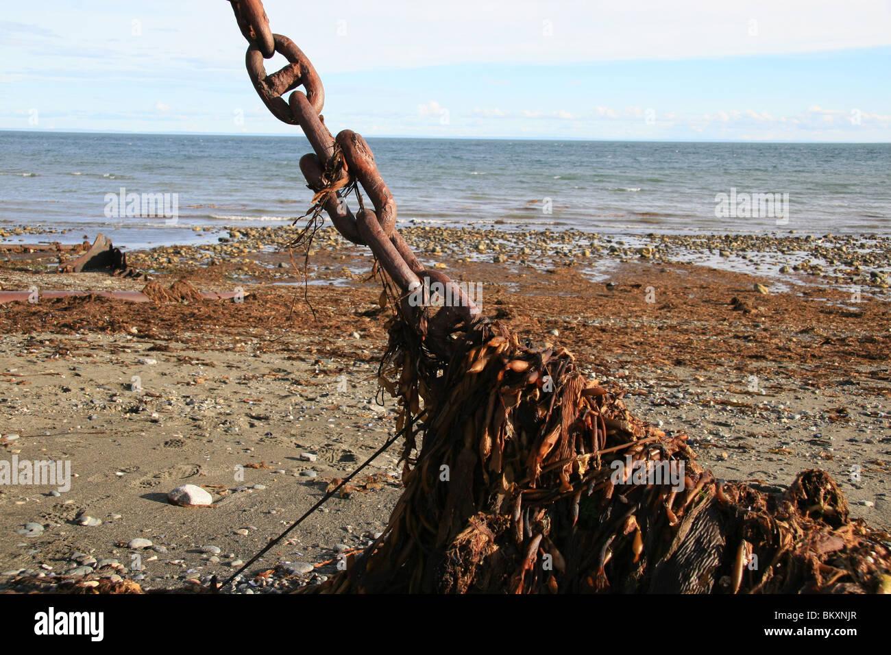 A chilean chain