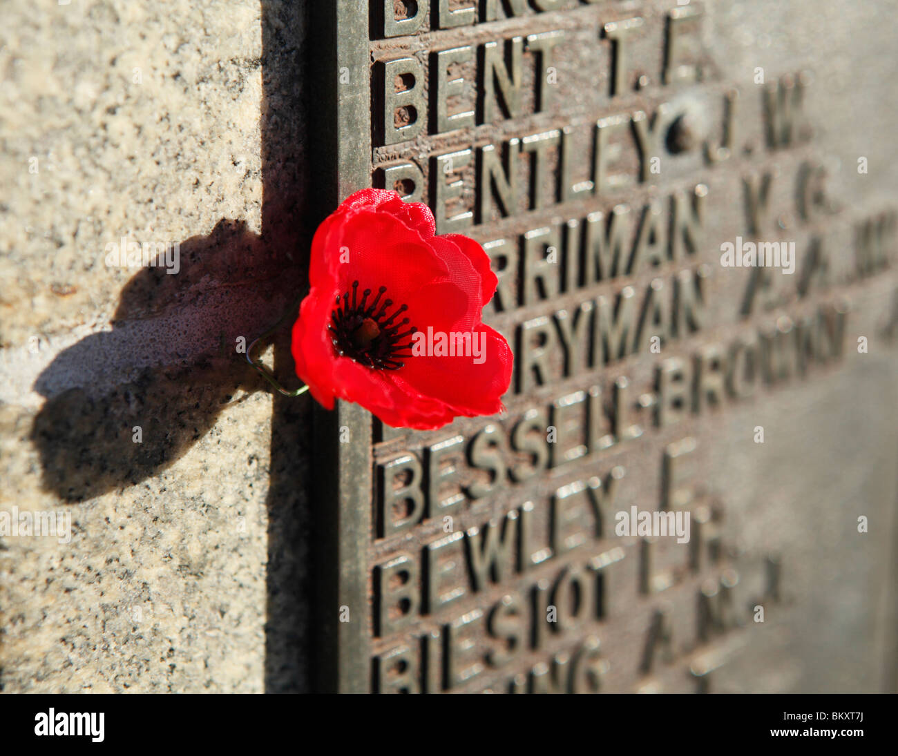 Plastic poppy stock photos plastic poppy stock images alamy poppy next to a plaque of remembrance on a war memorial stock image mightylinksfo