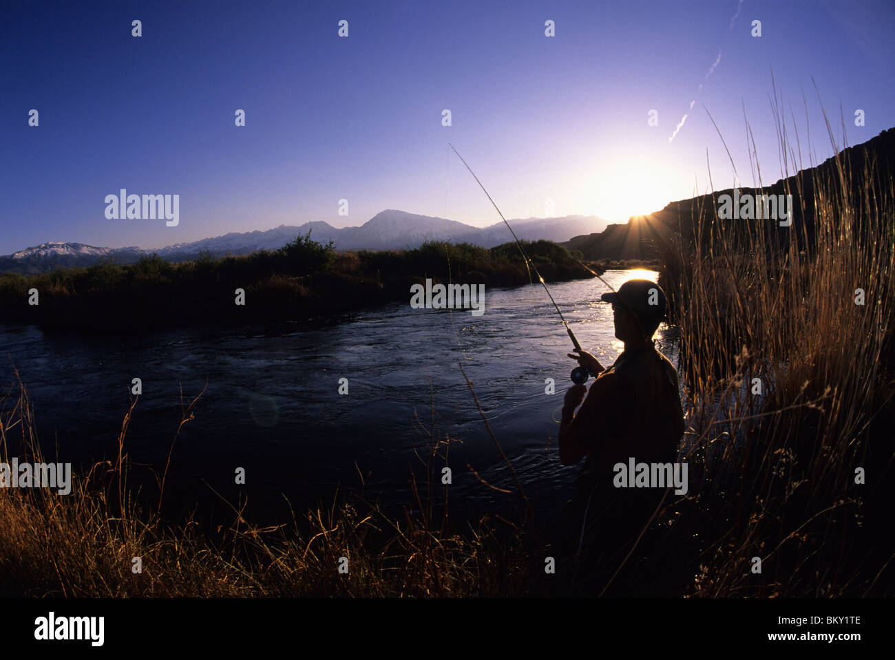 A man fly fishing in Bishop, California. - Stock Image
