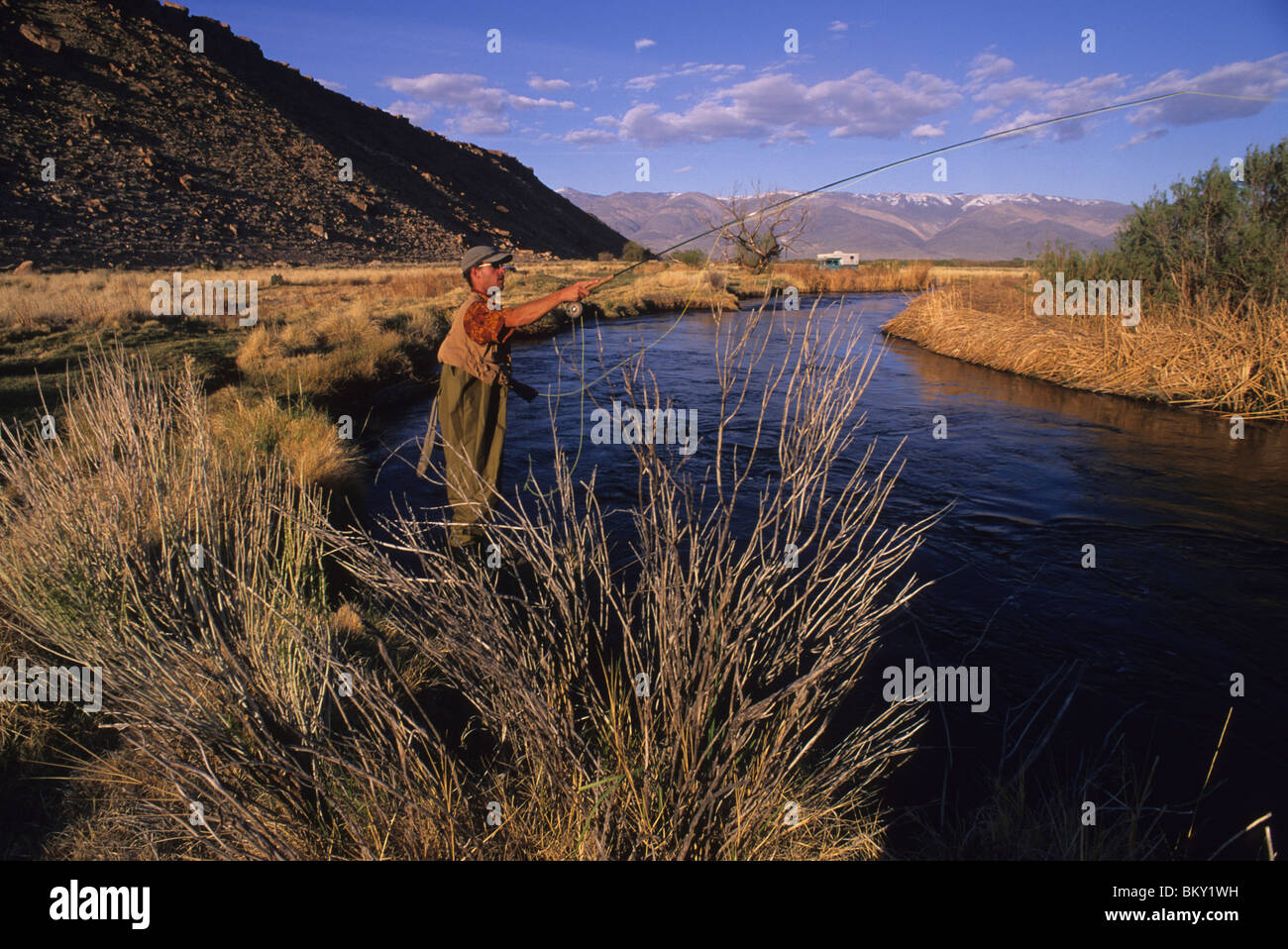 A man in waders cast his fly line in Bishop, California. - Stock Image