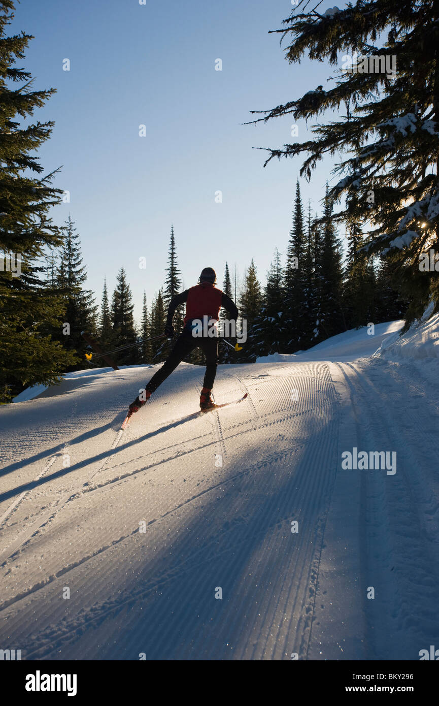A skate skier works her way up the freshly groomed trails on an early morning skate session. - Stock Image