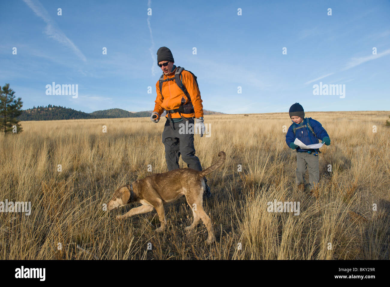 A young boy takes a break from his hike to find the right route on his map. - Stock Image
