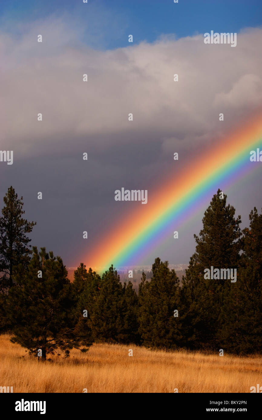 Rainbow over the grass, hills and trees of Blue Mountain, Missoula, Montana Stock Photo