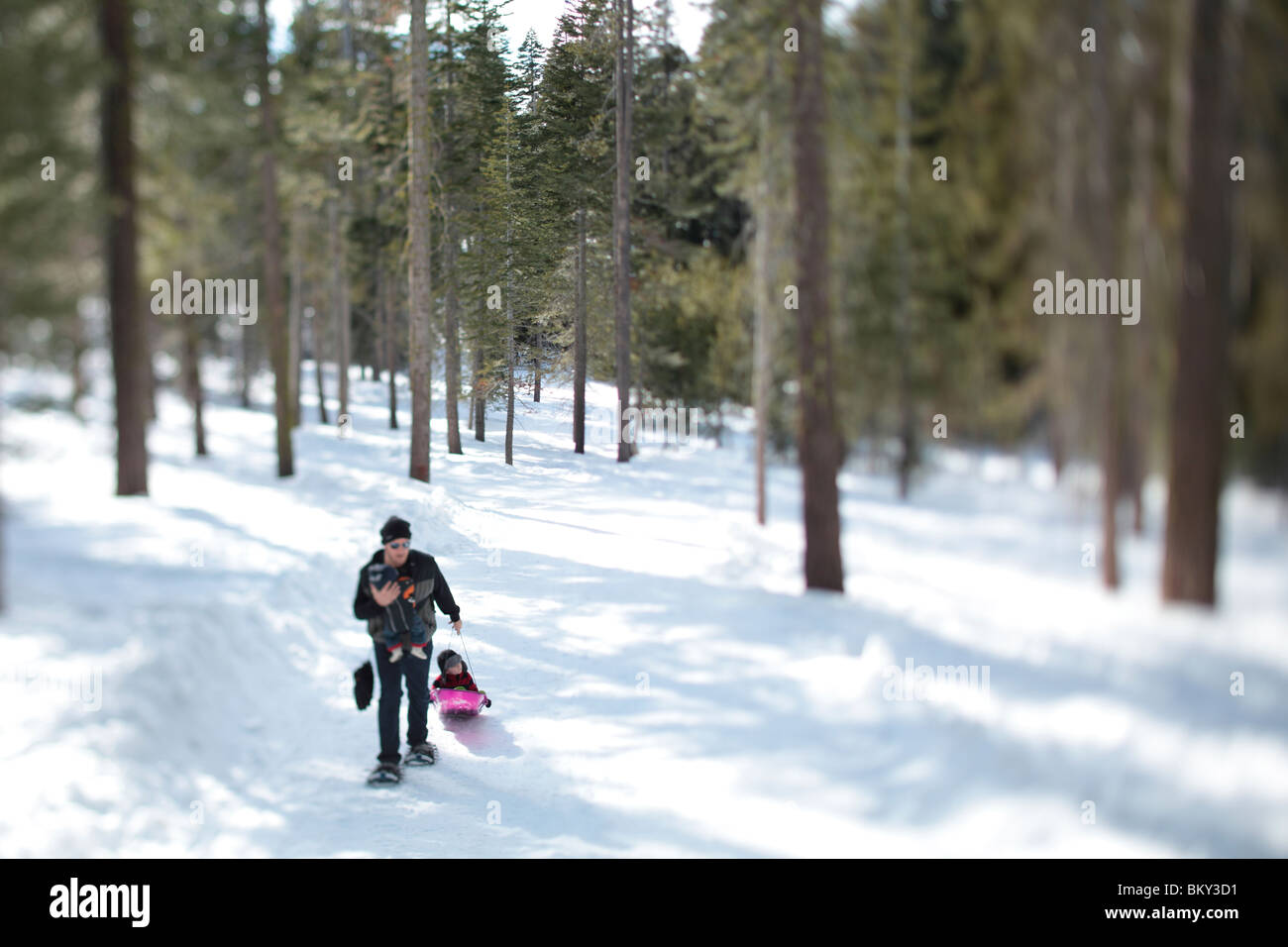 A father snowshoe with an infant and a toddler in the snow covered wilderness of Lake Tahoe, Calfornia. - Stock Image